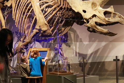 Students at Boston Museum of Science